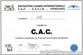01_cac_fribourg_2009_02_22