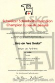 champion_suisse_de_beaute